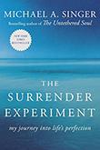 surrenderexperiment